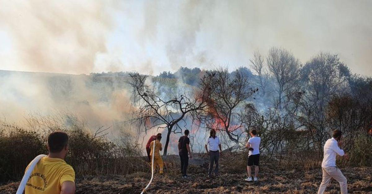 Akıma kapılan atmaca makilik alanda yangın çıkardı