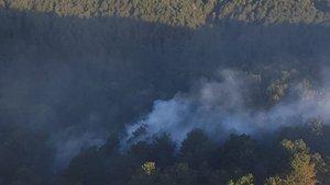 Balıkesir'de ormanlık alanda yangın!