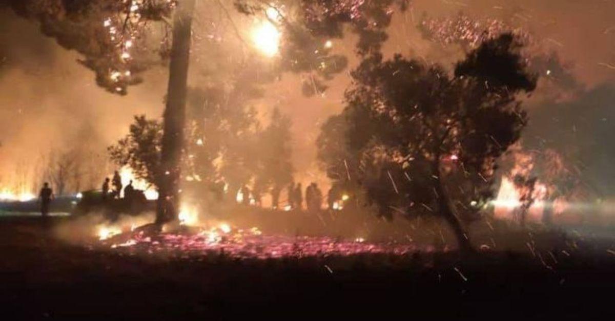 Çanakkale'de orman yangını: Kontrol altında alındı