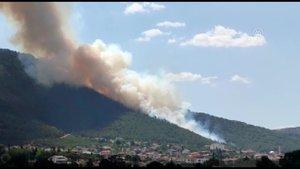 Denizli'de de orman yangını!