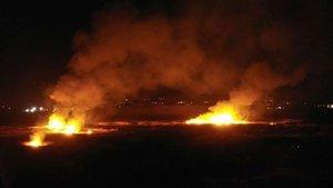Erzincan'da kuş cennetinde yangın paniği