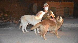 Hakkari'de hayvanlar için özel polis ekibi