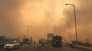 Hatay'da orman yangını evlere sıçradı! Müdahale sürüyor
