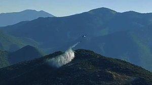 İslahiye'de orman yangını