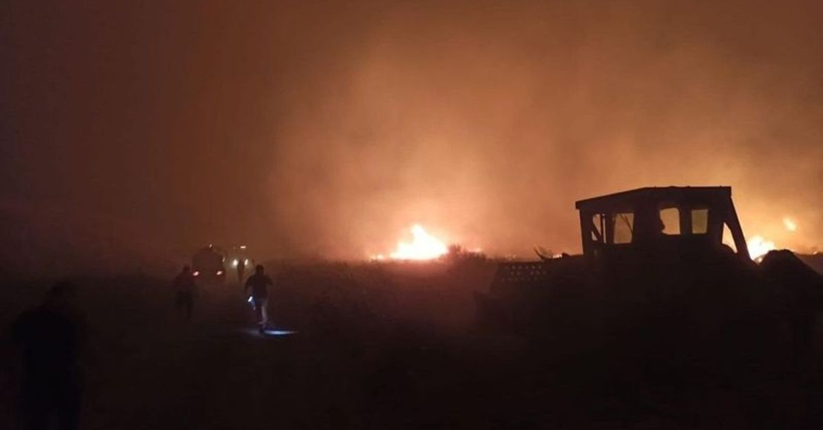 İzmir Çeşme'de yangın