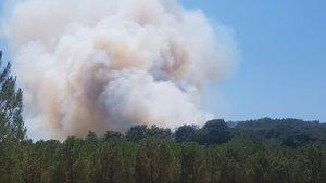 İzmir ve Bursa'da korkutan orman yangınları!