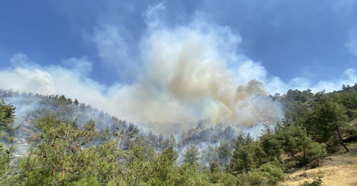 Kahramanmaraş'ta orman yangını çıktı!