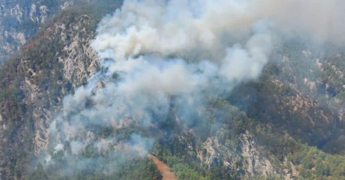 Köyceğiz'de orman yangını başladı!