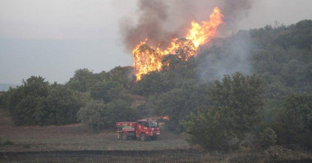 Manisa'da 6 farklı noktada orman yangını