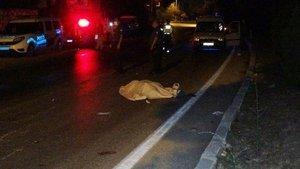 Mersin'de otomobilin çarptığı kadın öldü