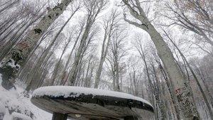Meteoroloji'den iki bölgeye önemli uyarı! Sağanak ve kar