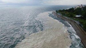 Müsilaj rüzgarla kıyıya sürüklendi