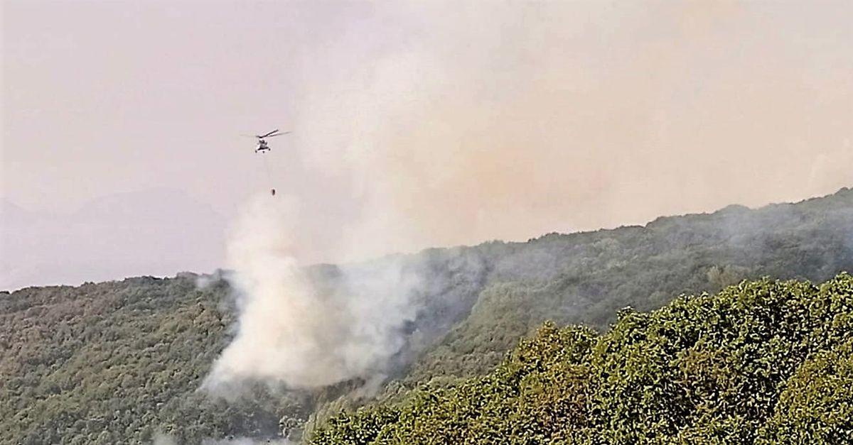 OGM'den Tunceli'deki yangınla ilgili açıklama