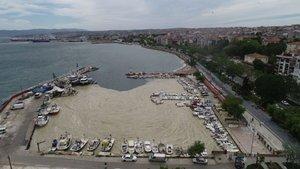 Tehlike büyük! Marmara'nın kâbusu ABD basınında