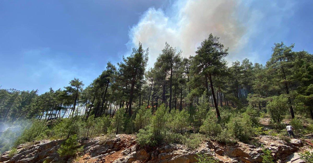 Tırda başlayan yangın ormana sıçradı!