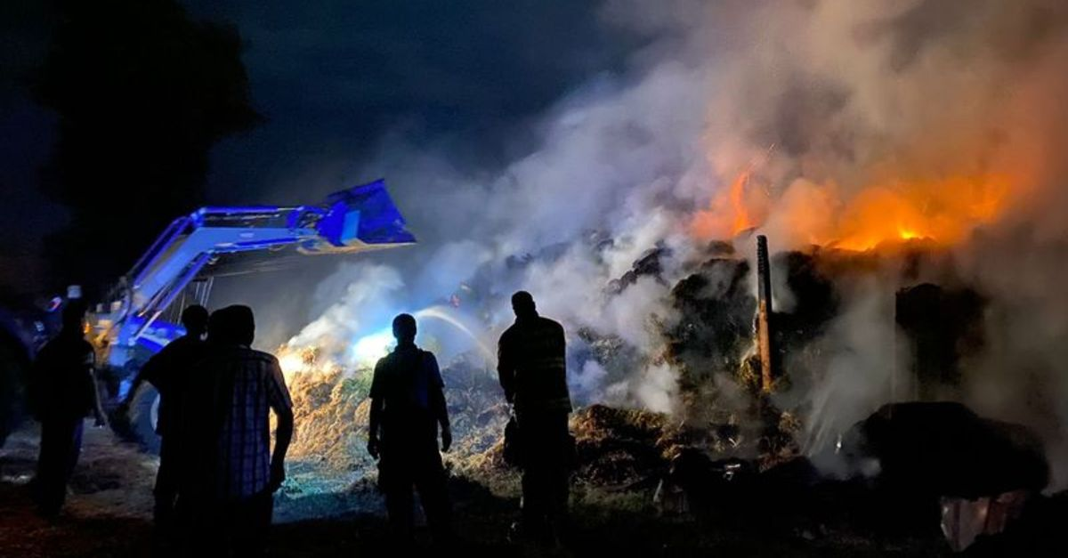 Bandırma'da çiftlik yangını: 20 kuzu öldü