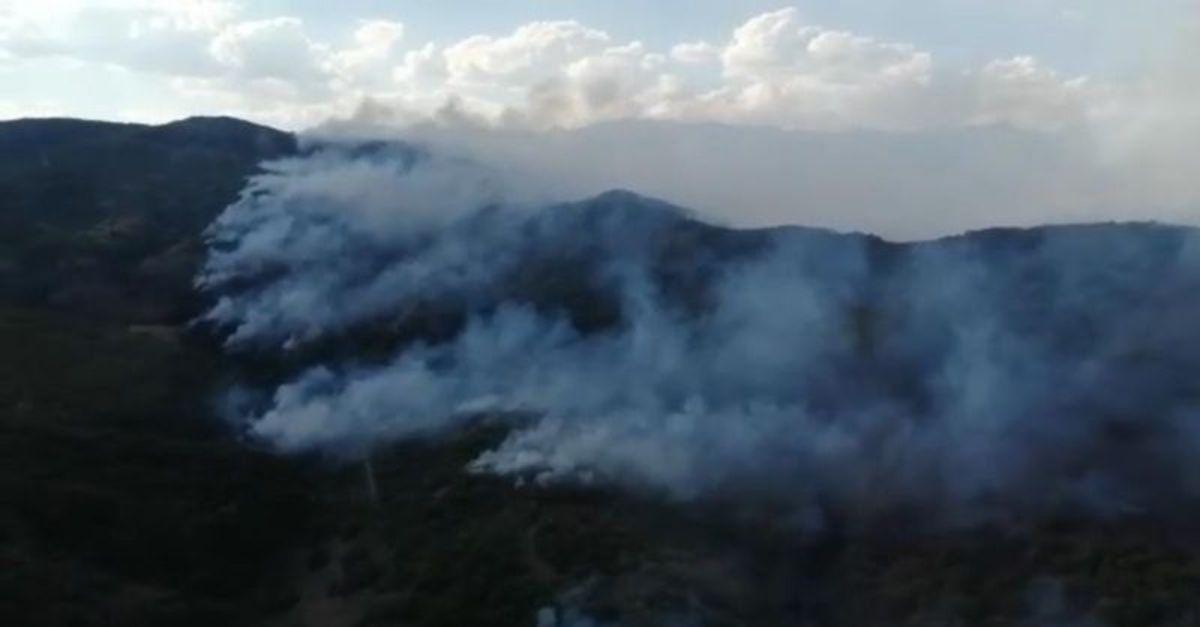 Tunceli'de örtü yangını